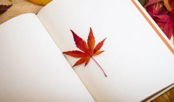כתיבת ביוגרפיה