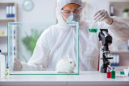 ניסויים בבעלי חיים
